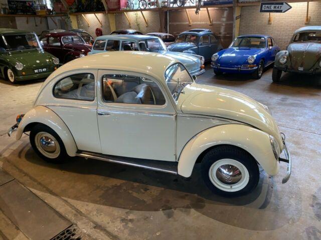 Volkswagen Käfer Brezel Brezelkafer Standard