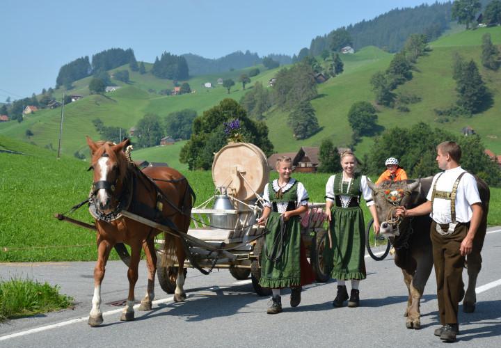 Entdeckertour Bodensee – Die Drei-Länder Tour