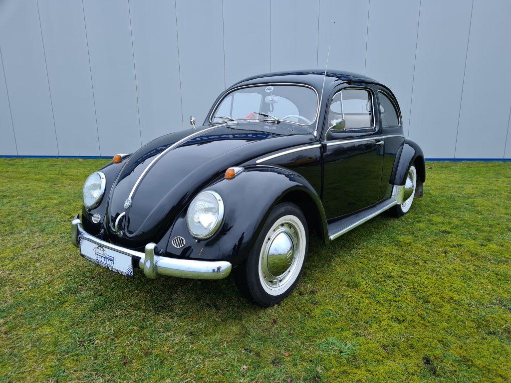 Volkswagen Ovali Export