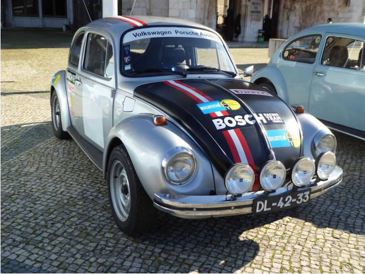 Salzburg Käfer